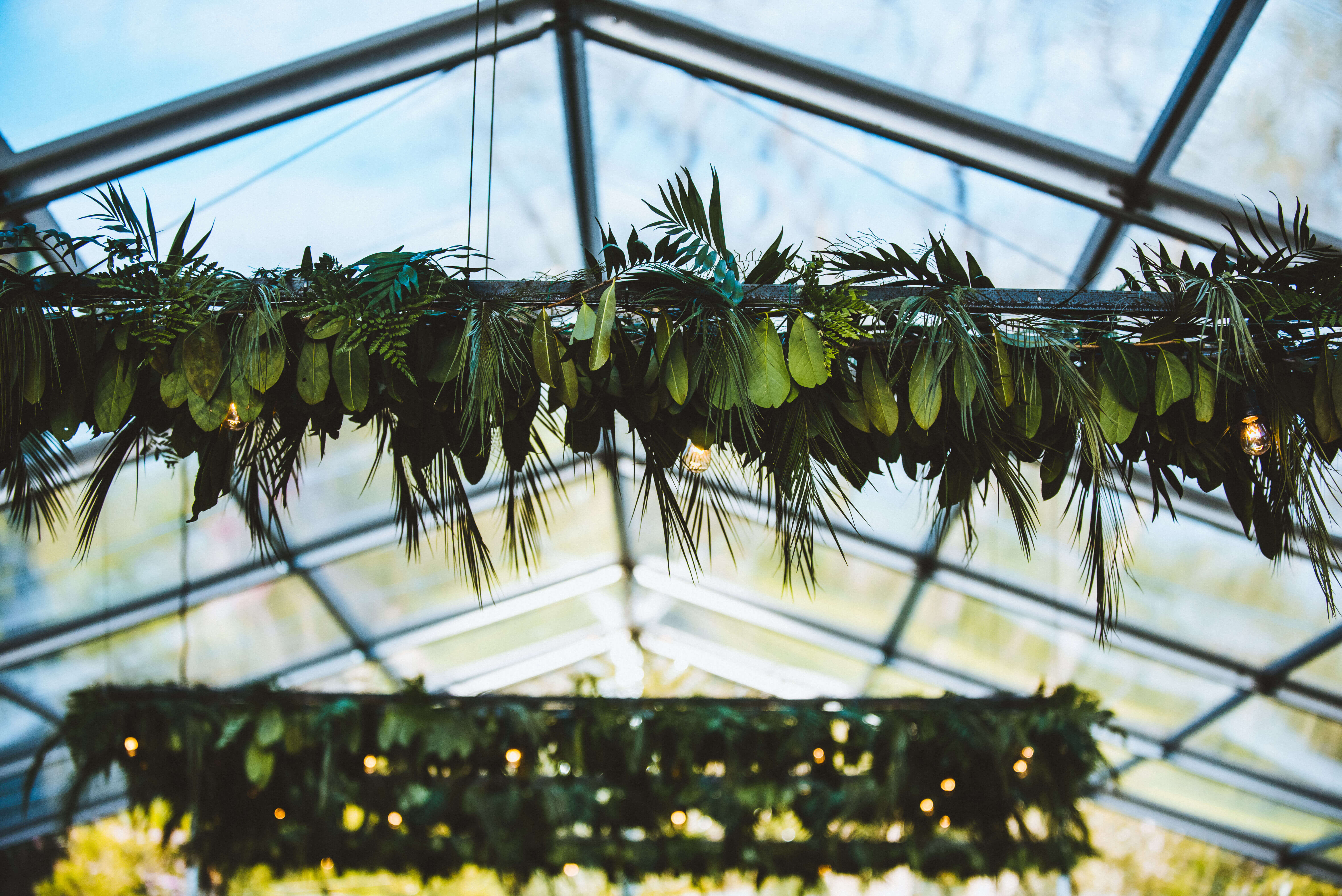 Clear Roofs and Hanging Foliage