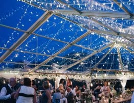 Clear Roof Marquee and Sparkly Lights